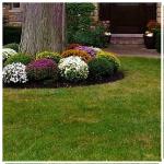 Landscaping Mundelein, IL