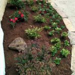 Garden Planting Mundelein, IL