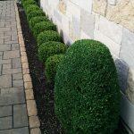 Landscaping Work Mundelein, IL